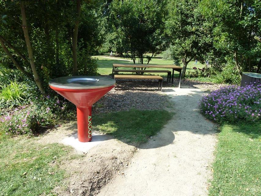 Cooxy dans un parc historique à Rennes